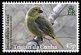 Tristan's Endemic Finches, 45p stamp