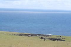 Tristan da Cunha 37 Degrees South: Knitwear from Tristan