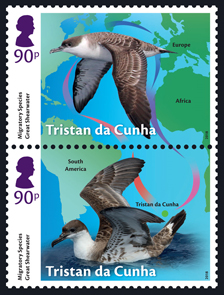 Tristan da Cunha Migratory Species, 90p, Great Shearwater